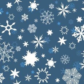 Snowflakes In Moonlight