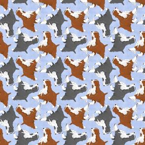 Trotting Springer Spaniels - blue