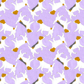 Trotting Russell Terriers - purple