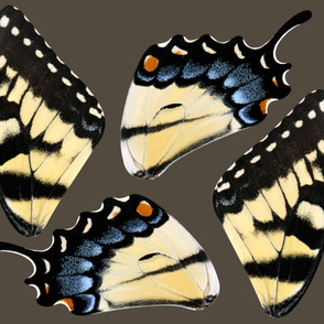 Oversized Tiger Swallowtail Butterfly Costume Wings