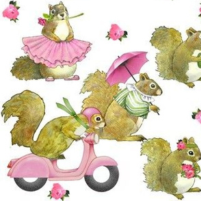 Girly Squirrels on white