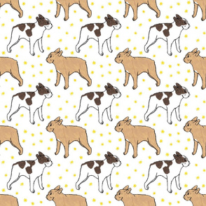 French Bulldog toons and stars