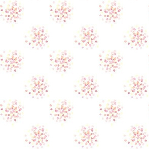 pink hydrangea bulbs