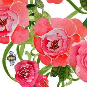 Peonies & Bees