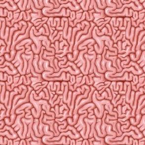 Tiny natural pink brains