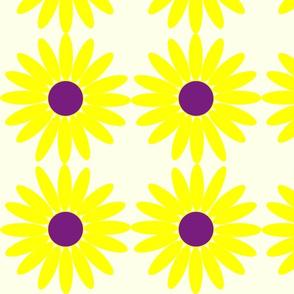 Daisy Dot