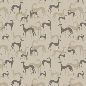 sighthounds coffee