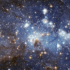 Star-Forming Region LH 95 in the Large Magellanic Cloud (tile)