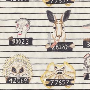 Australian Convicts