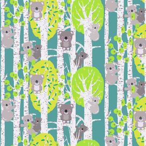 koalas in the trees