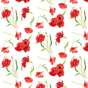 poppies on white smaller scale