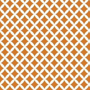 Burnt Orange Modern Diamonds