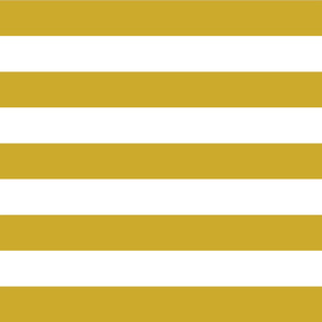 Gold Wide Stripes