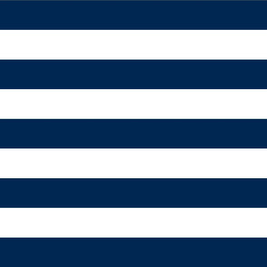 Navy Blue Wide Stripes