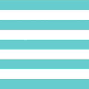 Turquoise Wide Stripes