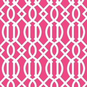 Hot Pink Trellis