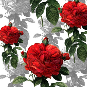 Redoute' Roses ~ Red and Grey