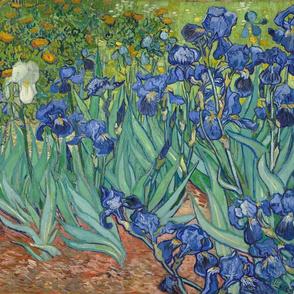 Van Gogh - Irises (1889) (half size)