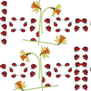 daffodil_and_lady_beetle
