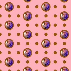 Pin&Pon Popmobranchia