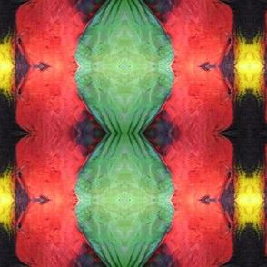 Lorikeet Feather Kaleidoscope