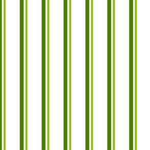 Trott Paisley Stripe ©Julee Wood