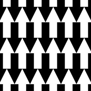01796889 : arrow2j : black + white