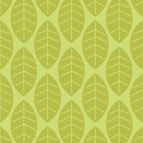 leaves in lime