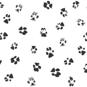 Paws Black and White