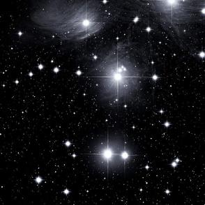 pleiades star cluster - b&w