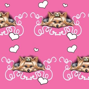 Yorkie Piccolo Pink