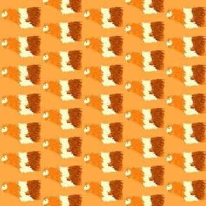 Shula - On orange background