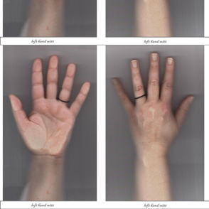 Left Hand Oven Mitt