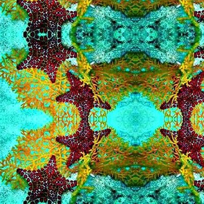 Starfish7-aqua/red/orange