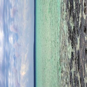 Stromatolites - 1