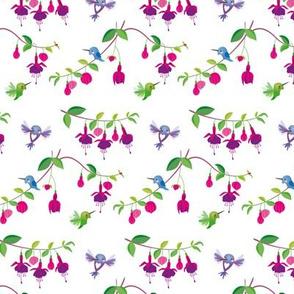 Hummingbirds Fuchsia