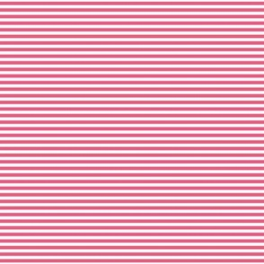 pinstripes hot pink