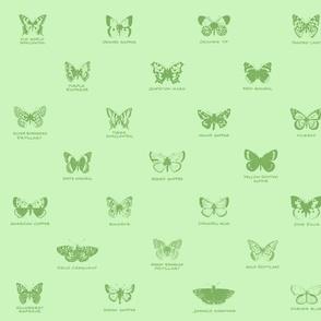 butterfly alphabet - apple green