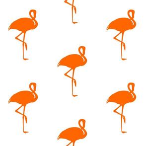 Flamingo Tangerine