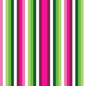 Narrow Pink and Green Watermelon Stripes 2