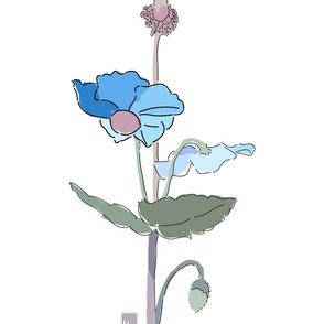 dr2_blue_poppy_final_noframe_chopJOUR
