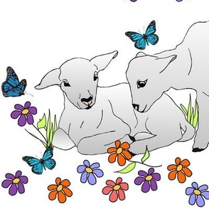 sping_lambs_2