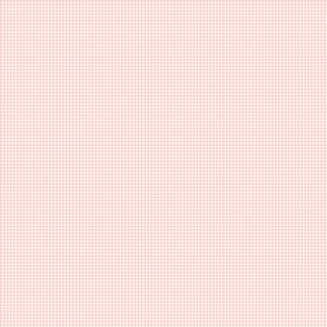 funny_bunny_gingham_pink