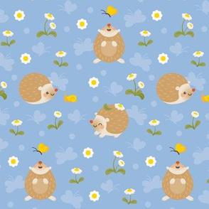 Hedgehogs in daisy field