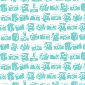 Camera Teal and White