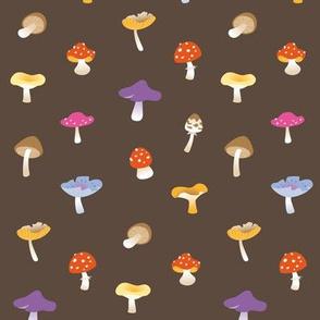 Mushroom colorful brown