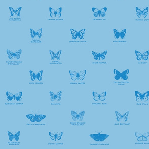 butterfly alphabet - light blue