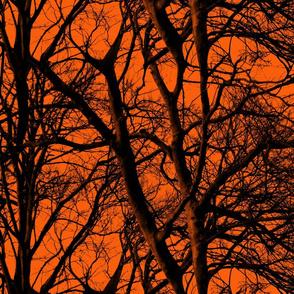 The Tree Lace ~ Halloween II