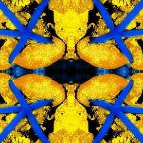Starfish3-blue/yellow