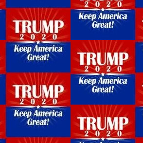 President Donald Trump 2020 Keep America Great